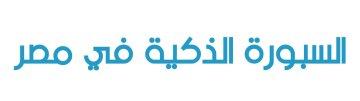 Smart Board Egypt